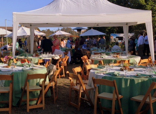 Rustic WIne Country Wedding Reception